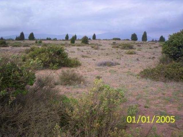 Se Vende Terreno De 1000 Mt2. Horcon Costa Quilen $ 5.000.000