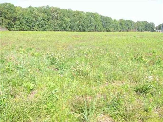 Searcy, Ar White Country Land 20.5 Acre
