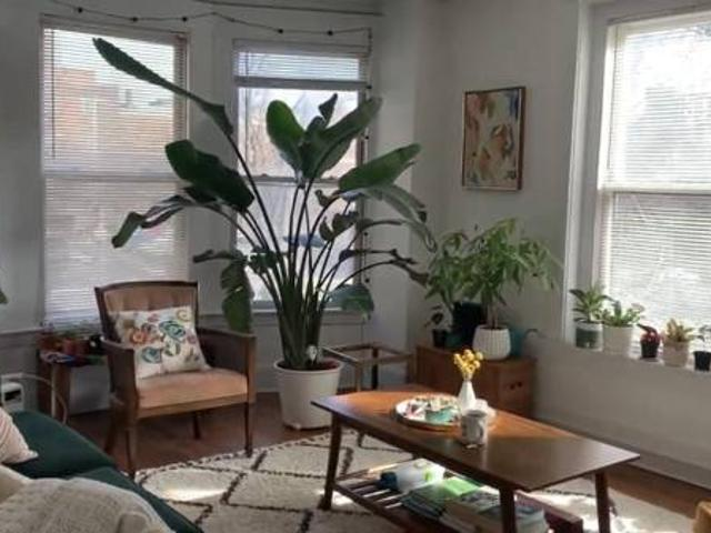 Short Term July Sublet New Haven
