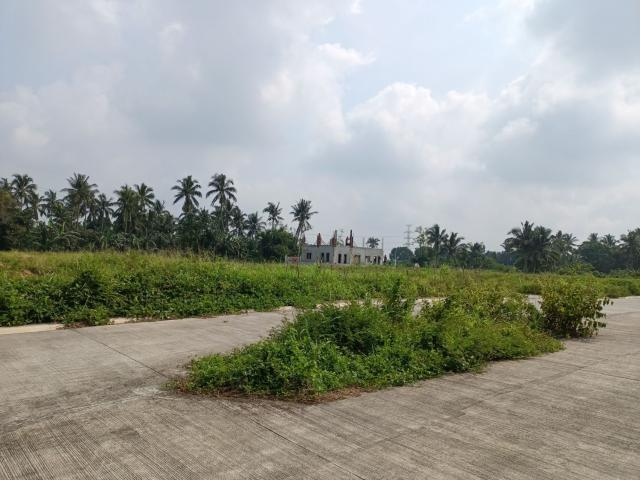 Silang Cavite Residential Lots For Sale