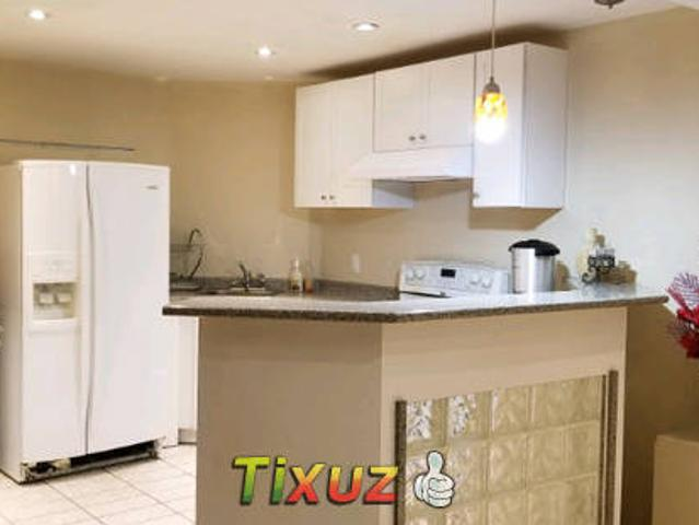 Specious 1 One Bedroom Basement Apartment For Rent