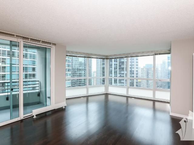 Streeterville Outdoor Pool, Laundry In Unit, Lake Views, Wood Floors