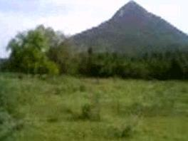 Tamilnadu Tourism Spot Commercial Land For Sale Vellore District