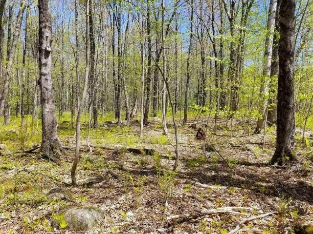 Tbd Hunter Road Strong, Me 04983