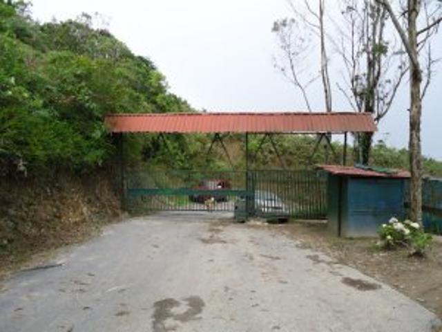Terreno En Venta Con Todos Los Servicios Via Colonia Tovar Km 35 En Conjunto Cer