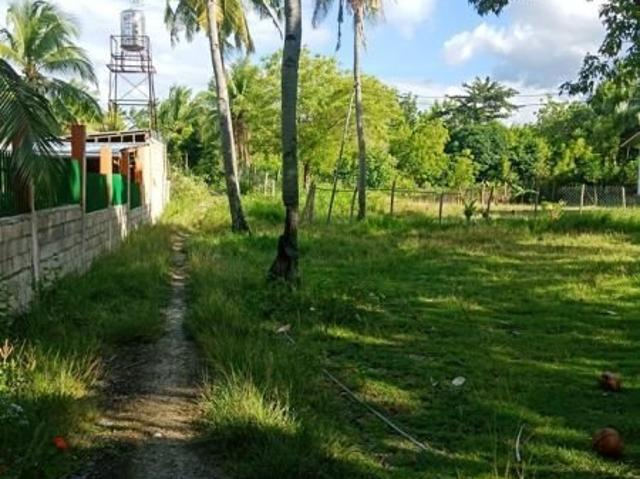 The Envy Of All City Dwellers Lot For Sale In Moalboal 6127291