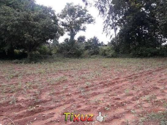 Two 2 Acre Agriculture Land For Sale At Near