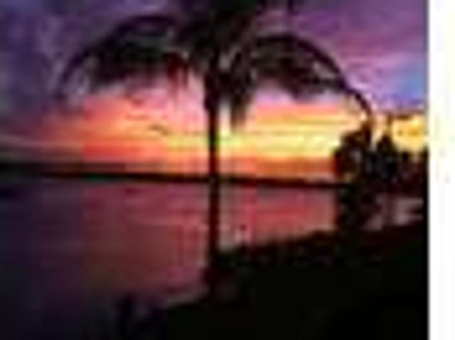 Two Br Condos & Townhouses For Rent St Petersburg Fl