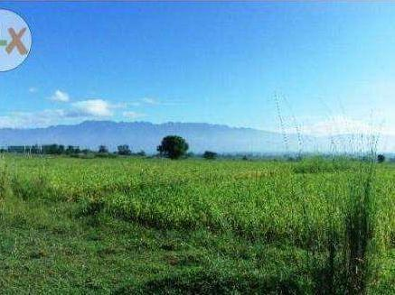 Umingan Pangasinan Farm Lot For Sale Only 3.8m