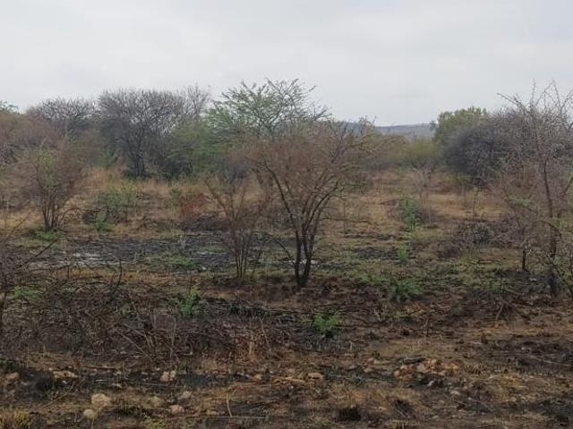 Vacant Land / Plot For Sale In The Orchards