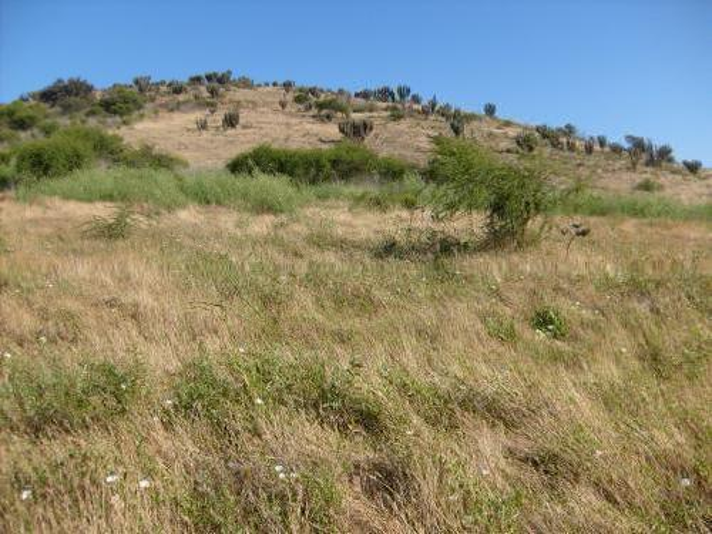 Vendo Dos Lotes De Terreno En Llanos De La Chimba Iv Región