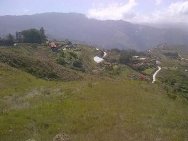Vendo Espectacular Terreno En La Colonia Tovar. Area: 2.211 Mt2