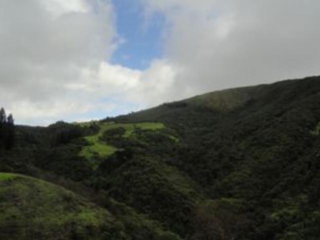 Vendo Hacienda De 92 Hectareas En Otavalo Imbabura Ecuador
