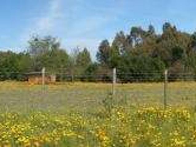 Vendo Parcela En Quilpue, Sector Lo Orozco, Urbanizada,$25.000.000, 5452 Mts2!