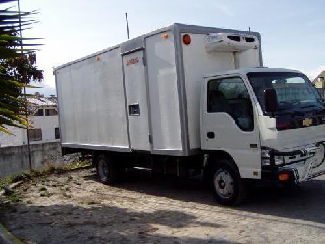 Vendo Por Viaje Camion Furgo Refrigerado 2010