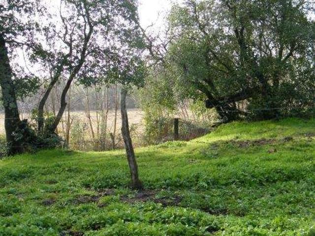 Vendo Terreno De 3, 8 Hectareas. Con Acceso A Rio Laja