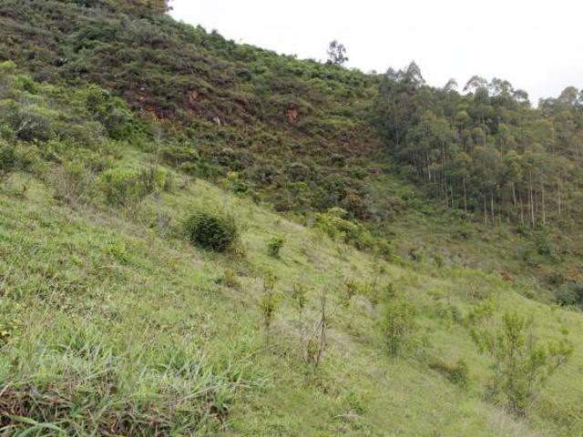 Venta De Finca En Venta En Loja Vilcabamba