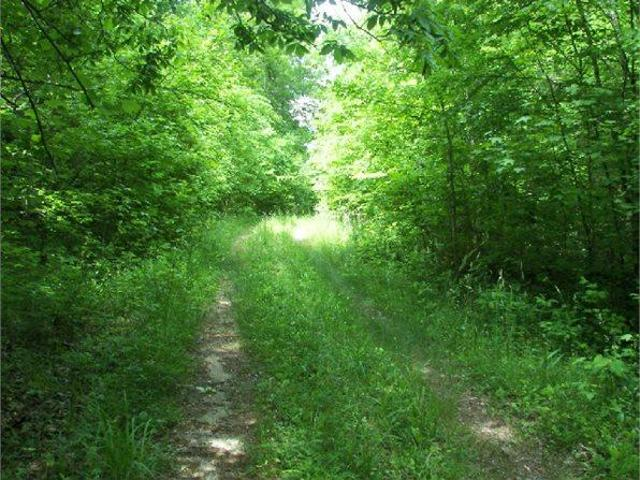 Walkertown, Nc Forsyth Country Land 19.990000 Acre