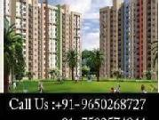 Buy Apartments In Ireo Victory Valley, Call 09650268727