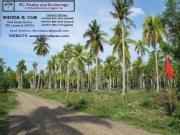 For Sale:150sqm Lots In San Agustin,babak,samal P4k/month