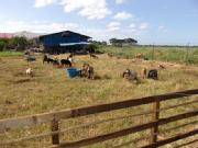 Industrial Farm For Sale / Lease
