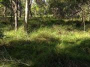Land For Sale Only $179,500 Agnes Waters