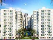 Penthouse For Sell In Lucknow