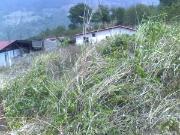 Terreno En La Villa De Seboruco, Santa Filomena, Seboruco. Táchira