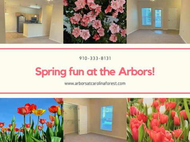 Welcome Spring In Your New Home Jacksonville
