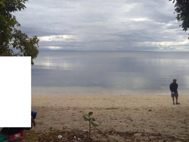 White Sand Beachlot For Sale In Malbago Camotes