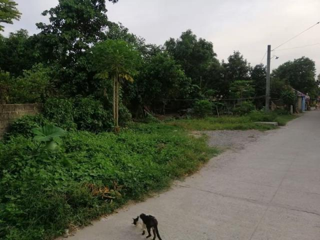 Wide Frontage Lot For Sale Located In Calibutbut Bacolor. Near Clark Airport!